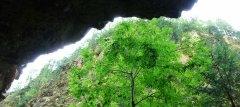 canyon_caves_43.jpg
