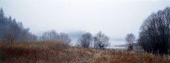 forest_meadows_040.jpg
