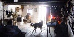 indoor_16.jpg