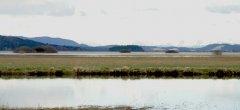 lake_63.jpg