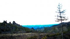 landscape_green_109.jpg
