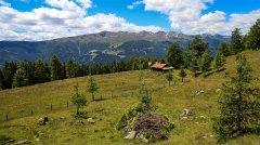 landscape_green_111.jpg