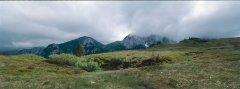 landscape_green_13.jpg