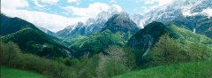 landscape_green_16.jpg