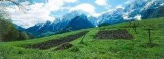 landscape_green_17.jpg