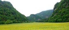 landscape_green_43.jpg