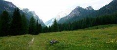 landscape_green_65.jpg