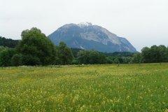 landscape_green_96.jpg