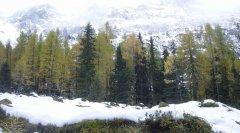 landscape_snow_02.jpg