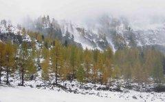 landscape_snow_03.jpg