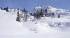 landscape_snow_07.jpg