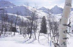 landscape_snow_09.jpg