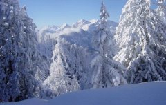 landscape_snow_11.jpg