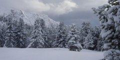 landscape_snow_12.jpg