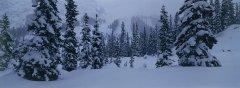 landscape_snow_22.jpg