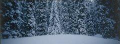 landscape_snow_23.jpg