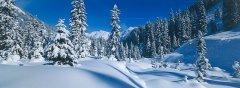 landscape_snow_24.jpg