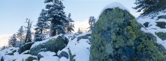 landscape_snow_27.jpg