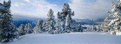 landscape_snow_29.jpg