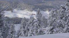 landscape_snow_31.jpg