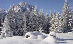 landscape_snow_35.jpg