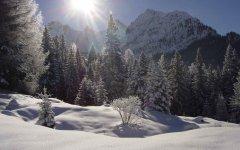 landscape_snow_36.jpg