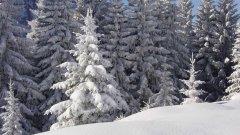 landscape_snow_38.jpg