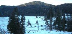 landscape_snow_41.jpg