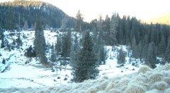 landscape_snow_42.jpg