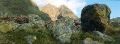 mountains_green_006.jpg