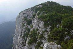 mountains_green_017.jpg