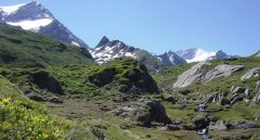 mountains_green_024.jpg