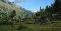 mountains_green_037.jpg