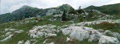 mountains_green_039.jpg
