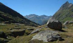 mountains_green_077.jpg