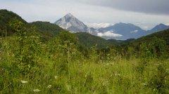 mountains_green_081.jpg