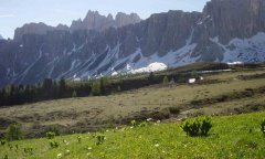 mountains_green_094.jpg
