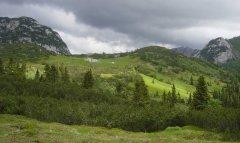 mountains_green_102.jpg