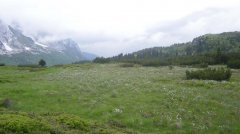 mountains_green_103.jpg