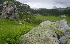 mountains_green_109.jpg