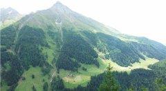 mountains_green_115.jpg
