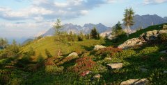 mountains_green_117.jpg