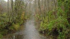 river_06.jpg