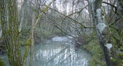 river_07.jpg