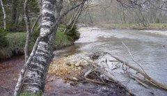river_15.jpg