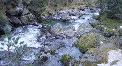 river_55.jpg