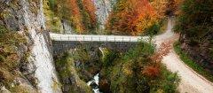 bridge_road_20.jpg