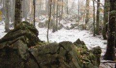 rocks_05.jpg