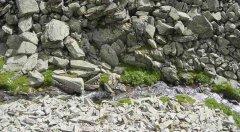 rocks_19.jpg