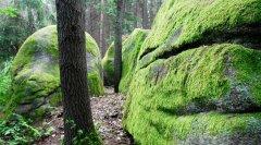 rocks_36.jpg